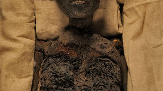 Photo Album: King Tut, Queen Nefertiti, and One Tangled Family Tree