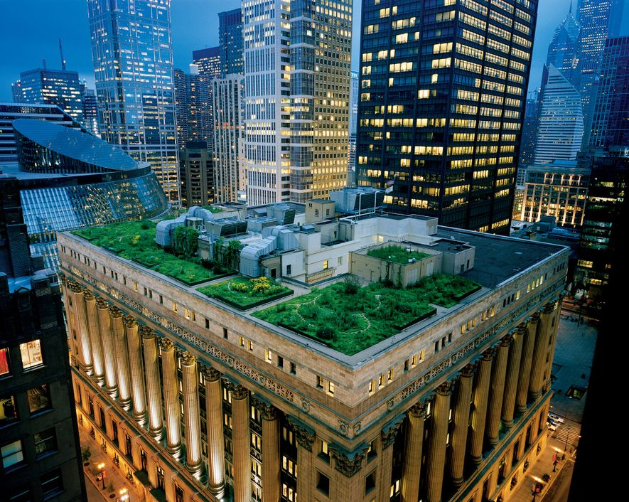 Chicago is one of several U.S. cities promoting the use of green roofs. It put plants ...