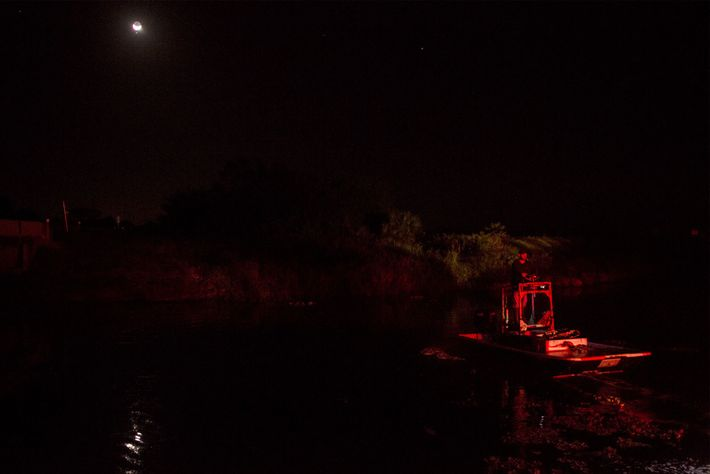 Hunters stalk alligators at night by land or in this case by boat, aiming to snag ...