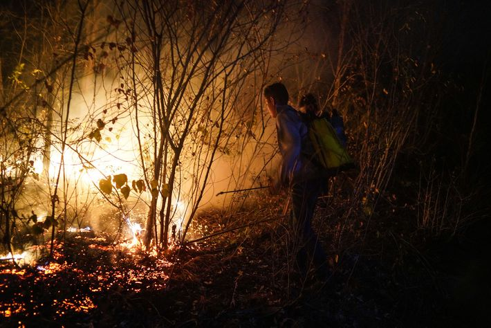 Young volunteers from Roboré, a town about 20 miles from Aguas Calientes, attempt to extinguish flames. ...