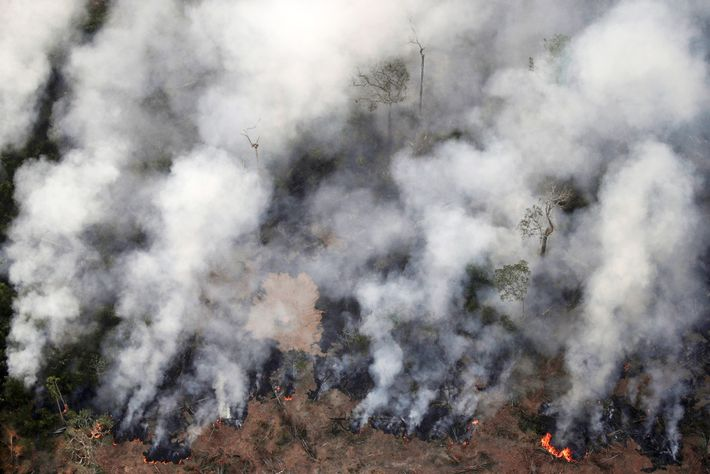 Fire smoulders in an area of the Amazon rainforest near Porto Velho, Rondonia State, on August ...