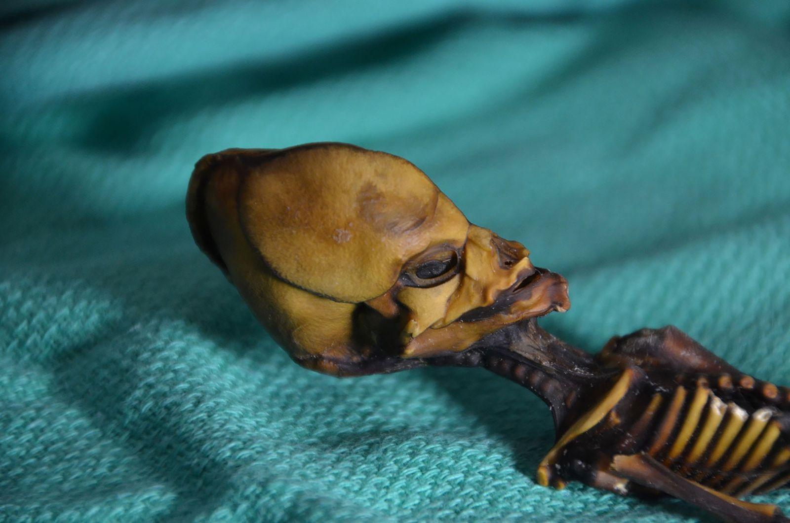 Tiny Mummy's 'Alien' Appearance Finally Explained