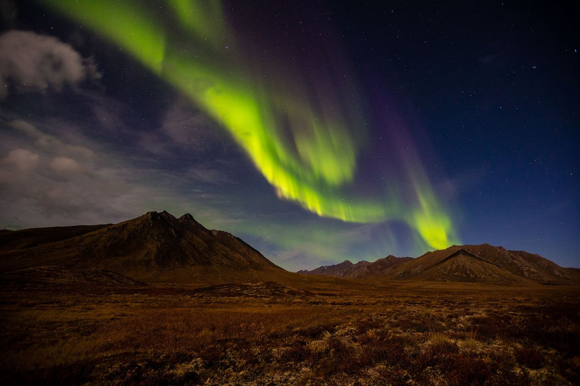 An aurora creates streamers of light over Canada's Yukon Territory. Auroras are most commonly seen at ...