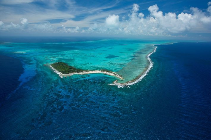 Belize's Half Moon Caye Natural Monument sits in the middle of the 160-mile MesoAmerican Barrier Reef, ...