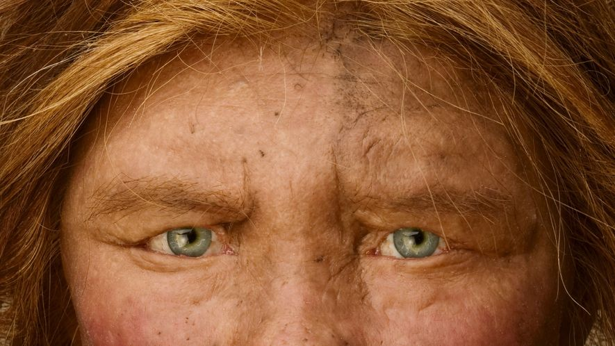 Multiple lines of mysterious ancient humans interbred with us