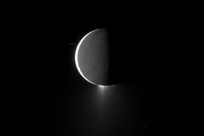 An image of the icy plumes spouting from Saturn's moon Enceladus, as seen by NASA's Cassini ...