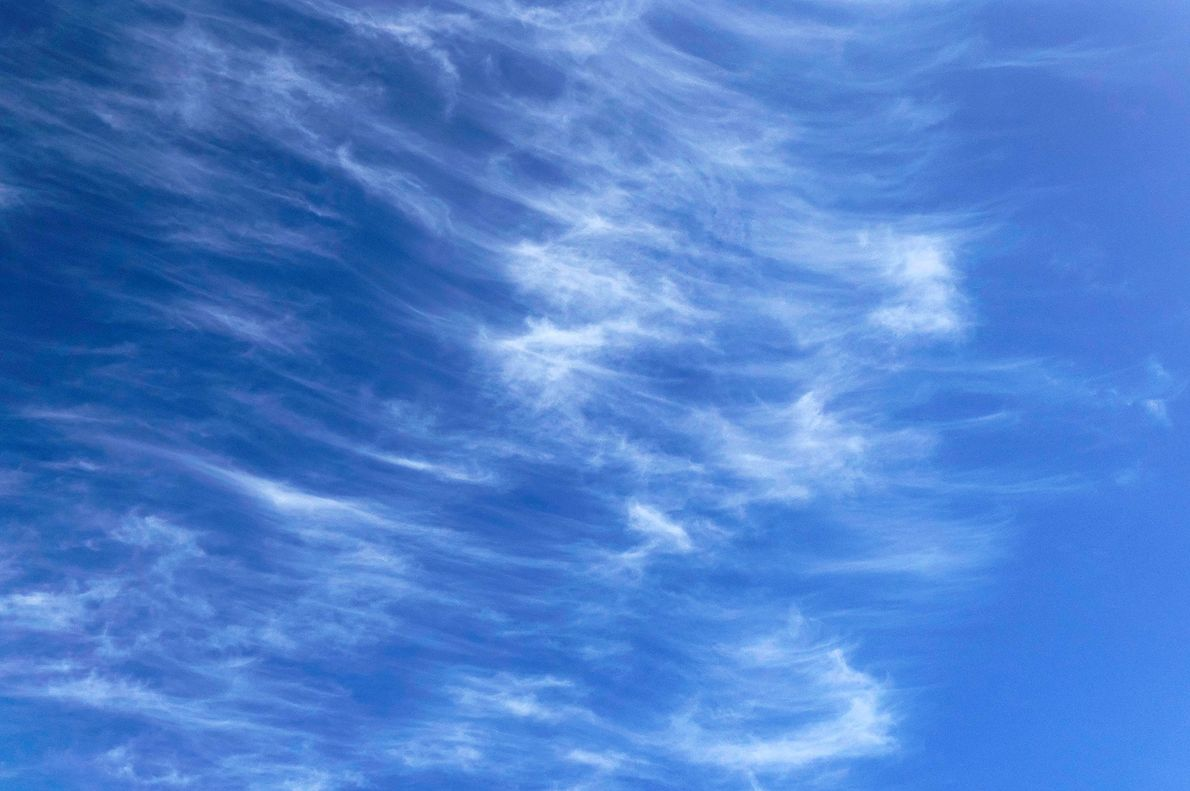 Cirrus clouds are made of pure ice and occur high in the troposphere.
