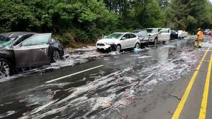 'Slime Eels' Explode on Highway After Bizarre Traffic Accident