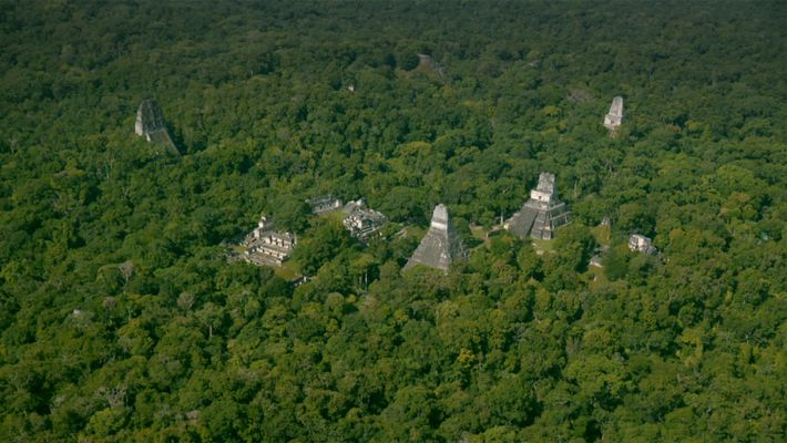 Laser technology known as LiDAR digitally removes the forest canopy to reveal ancient ruins below, showing ...