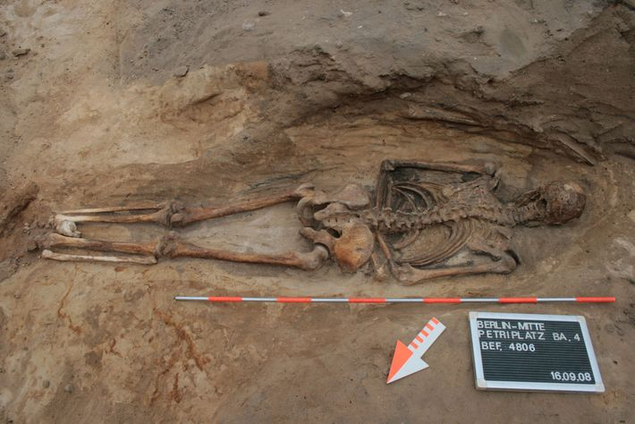 A medieval burial in a Berlin churchyard reveals a man buried face down. Prone burials increased ...