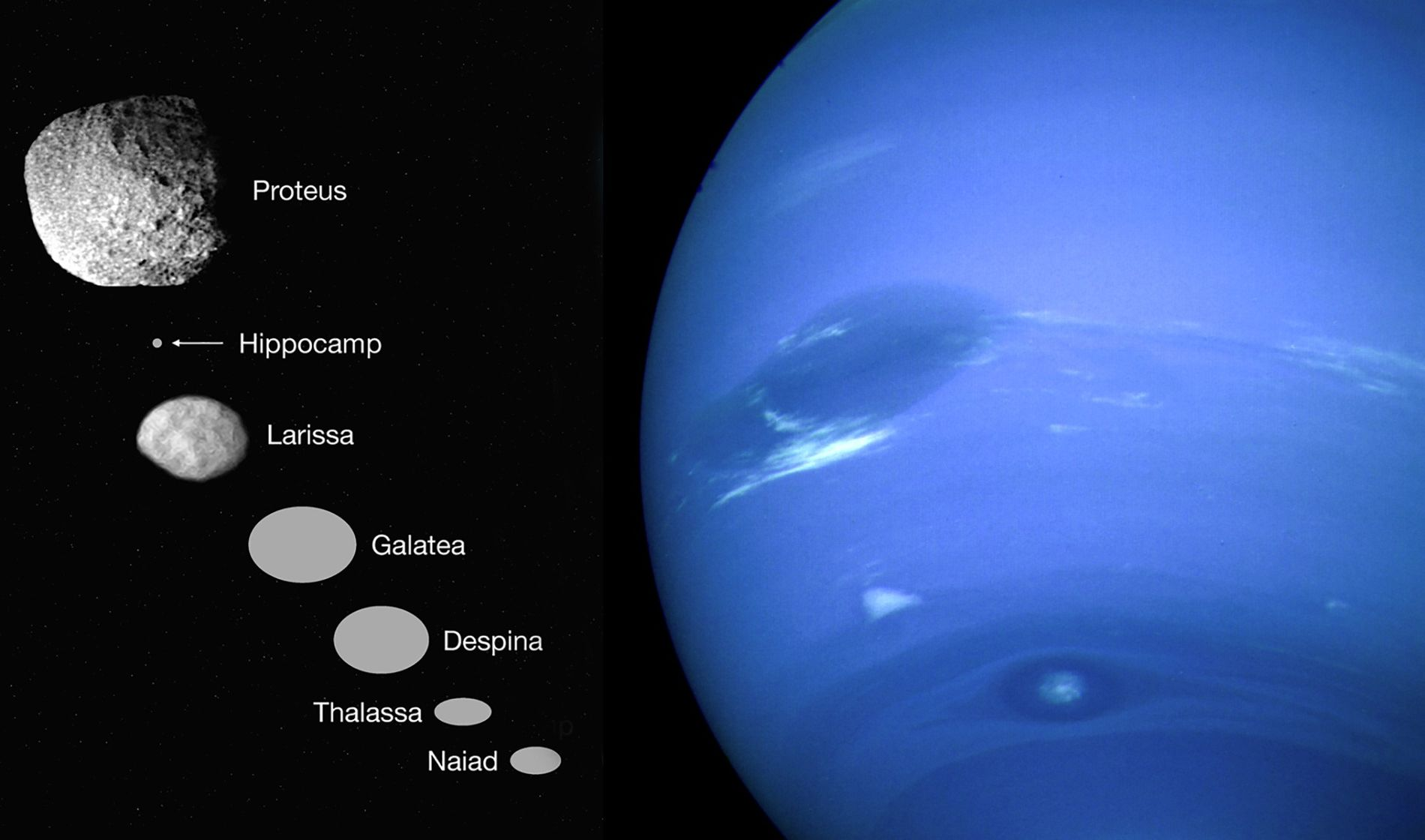 In 1989, Voyager 2 flew by Neptune, right, and spotted six small inner moons, represented in ...