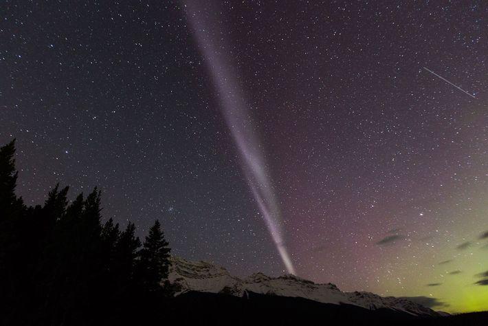 The aurora known as Steve is seen over Lake Minnewanka in Alberta.