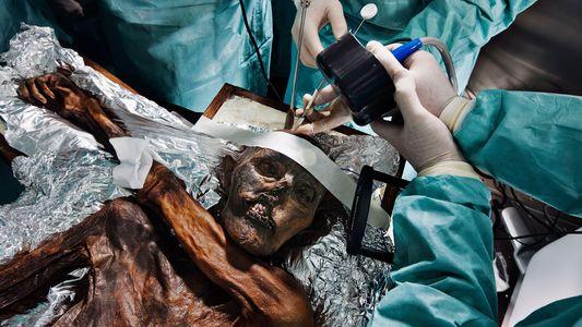 Scientists reconstruct Ötzi the Iceman's frantic final climb
