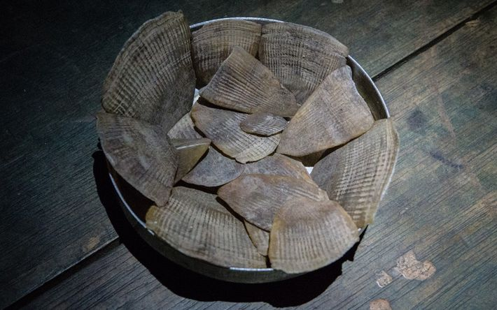 Hunters boil pangolins to remove the scales, which they then sell to middle men who smuggle ...