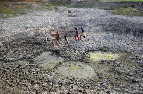 How an Indian Guru Cleans the World's Most Polluted Rivers