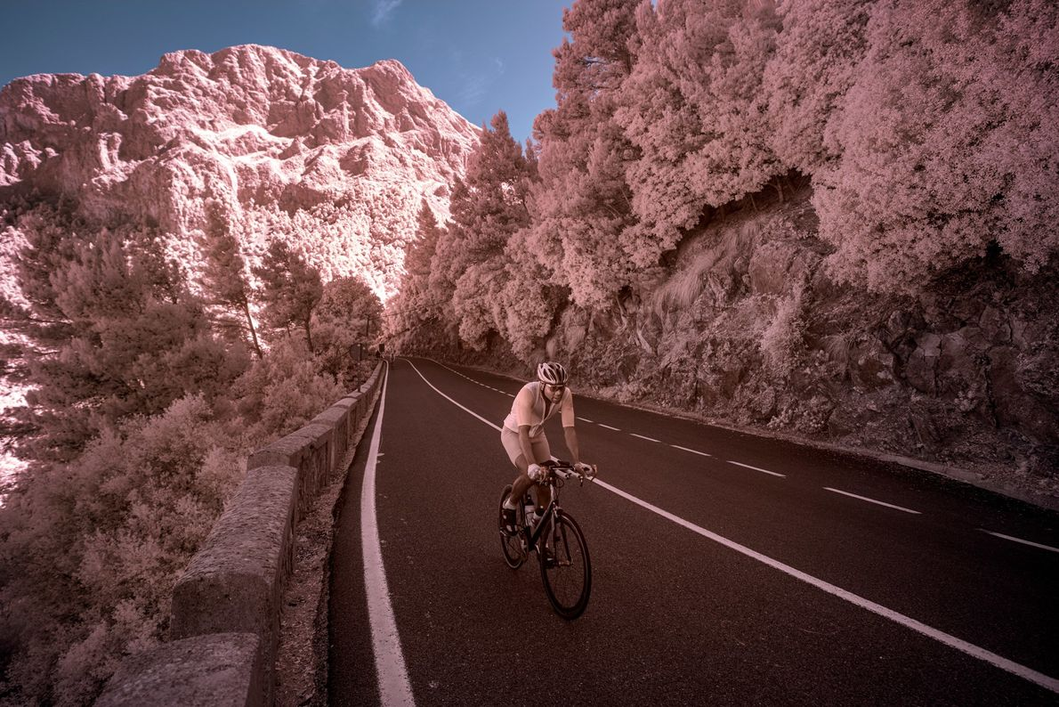 During cycling's low season, pro riders train on the island's bike-friendy (but often steep) roadways. Here ...