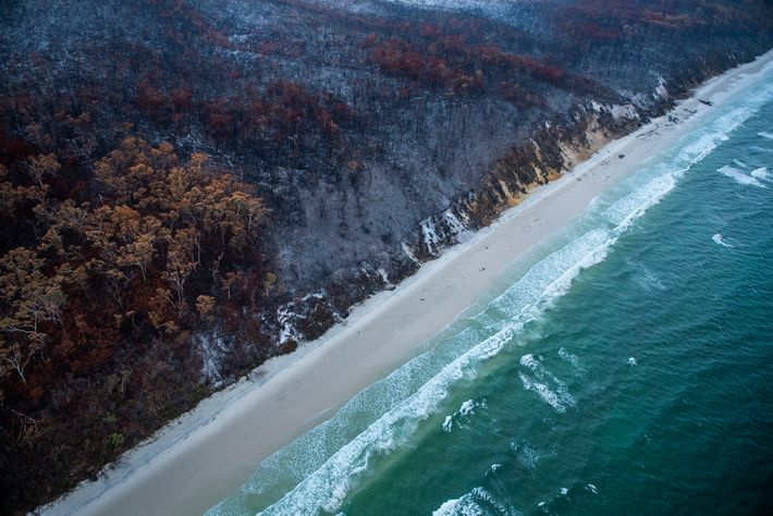 Fires raged through the island to its pristine, white sandy beaches. With the island smothered in ...