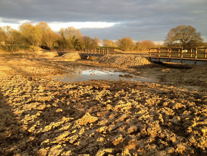 As part of the Knepp rewilding project, a stretch of the heavily engineered River Adur has ...