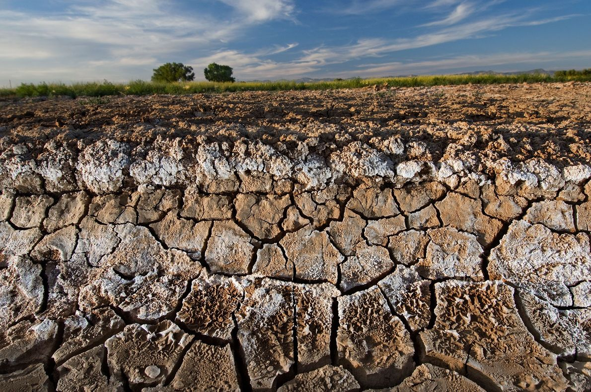 Dried soils in the Grand Valley near Grand Junction, Colorado are whitened by evaporated salts, which …