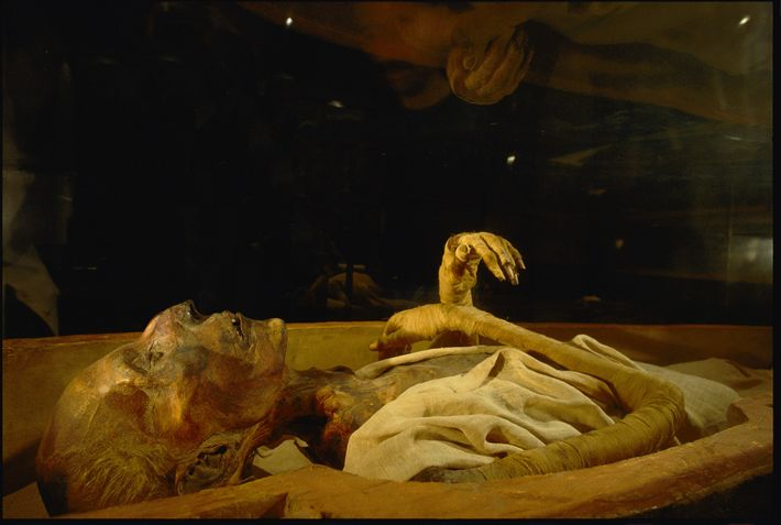 Visitors peer at the mummified remains of Ramses II in Cairo's Egyptian Museum. The pharaoh, who ...