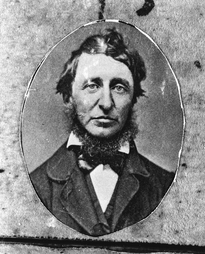 """Henry David Thoreau spent two years at Walden Pond—""""a dilettante,"""" according to Knight."""