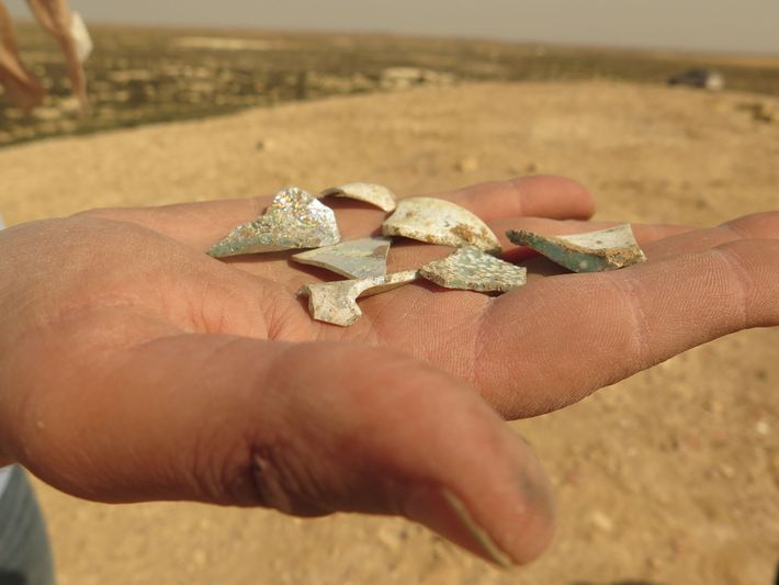 Shells excavated from the trash mounds of Elusa reflect what its residents discarded 1,500 years ago.