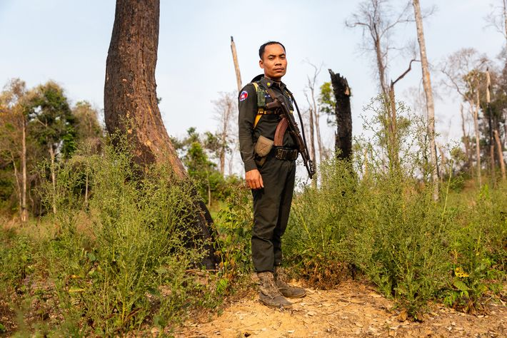 A military policeman looks for illegal loggers in the sanctuary.