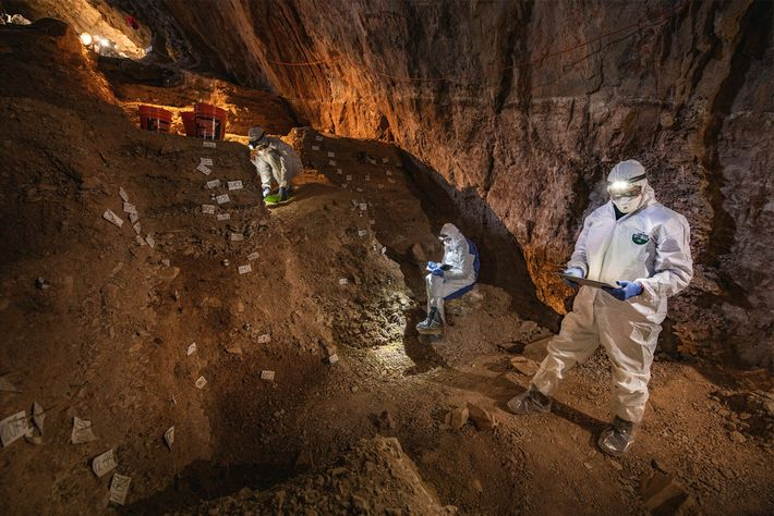 Scientists compare notes on the stratigraphy of Chiquihuite Cave in preparation for sampling traces of plant ...