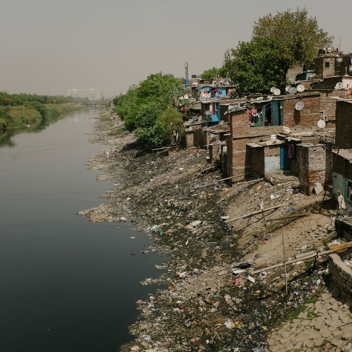 Impoverished people in India often have no housing options other than living next to open sewers, ...
