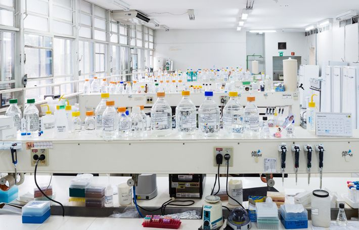 At the biogenics lab at EMBRAPA Genetic Resources and Biotechnology in Brasilia, Brazil, agricultural researchers focus ...