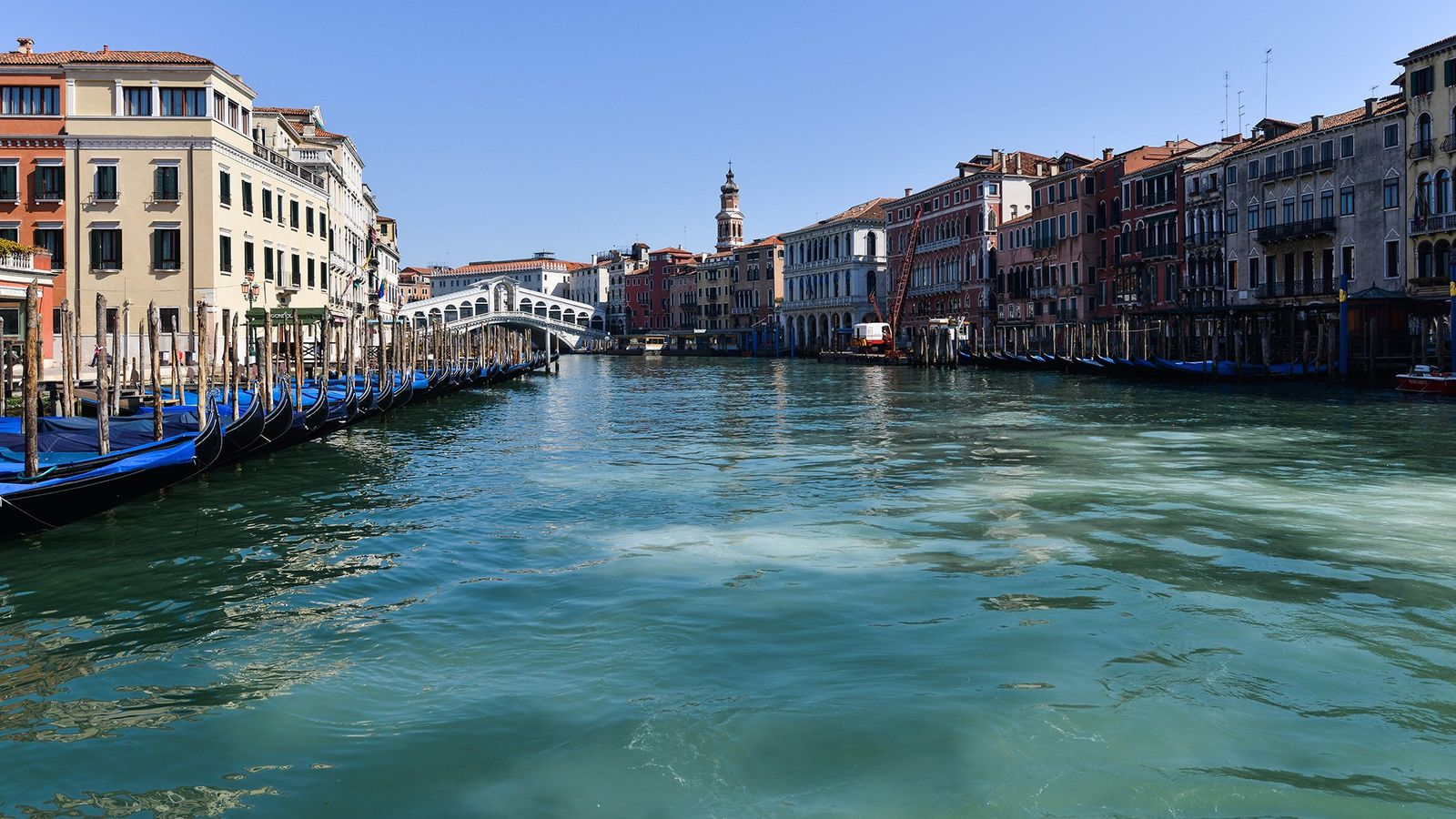 As the normally bustling canals of Venice became deserted amid pandemic quarantines, viral social media posts ...