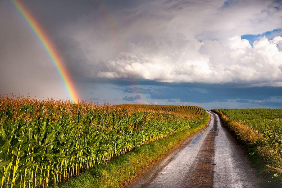 Cumulonimbus clouds threatening rain form a dramatic backdrop for a rainbow in Austria.