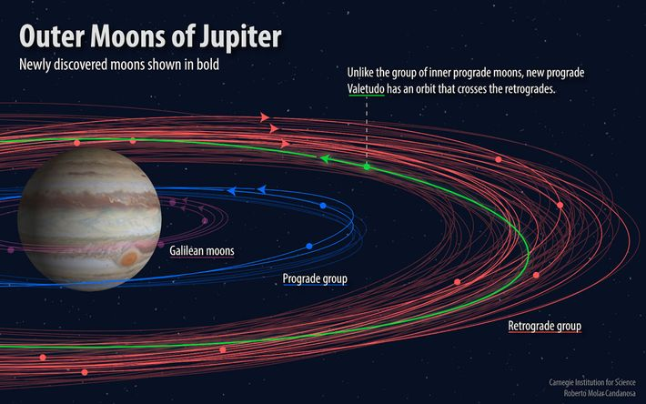 An illustration shows the orbits of the outer moons of Jupiter.