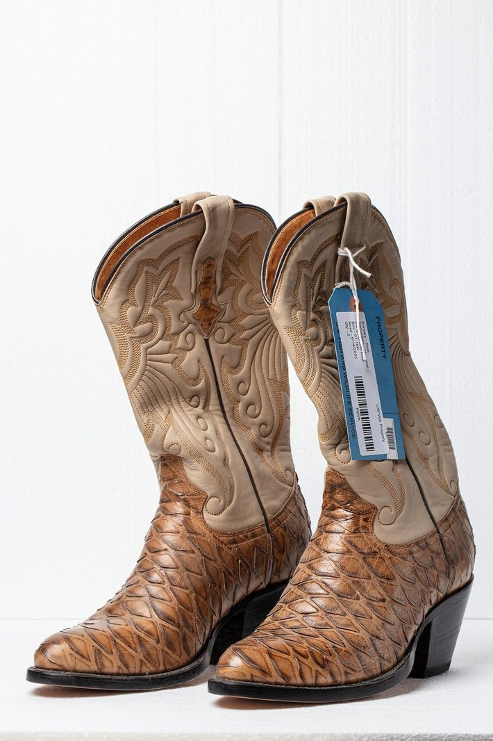 Before international trade in pangolins was banned, leather goods such as these boots, made in Mexico ...