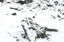 Over the years, trekkers to Roopkund Lake have gathered bones for display.