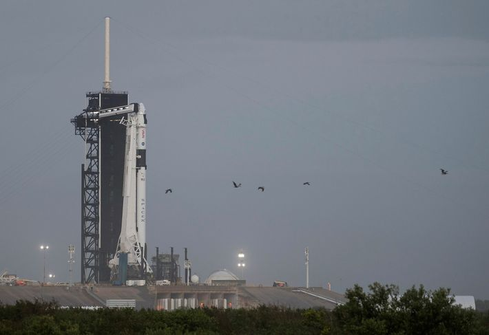 A SpaceX Falcon 9 rocket with the Crew Dragon spacecraft is seen on the launch pad ...