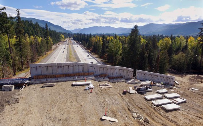 A view of I-90 through Washintgon's Cascade mountains from the top of the new wildlife bridge ...