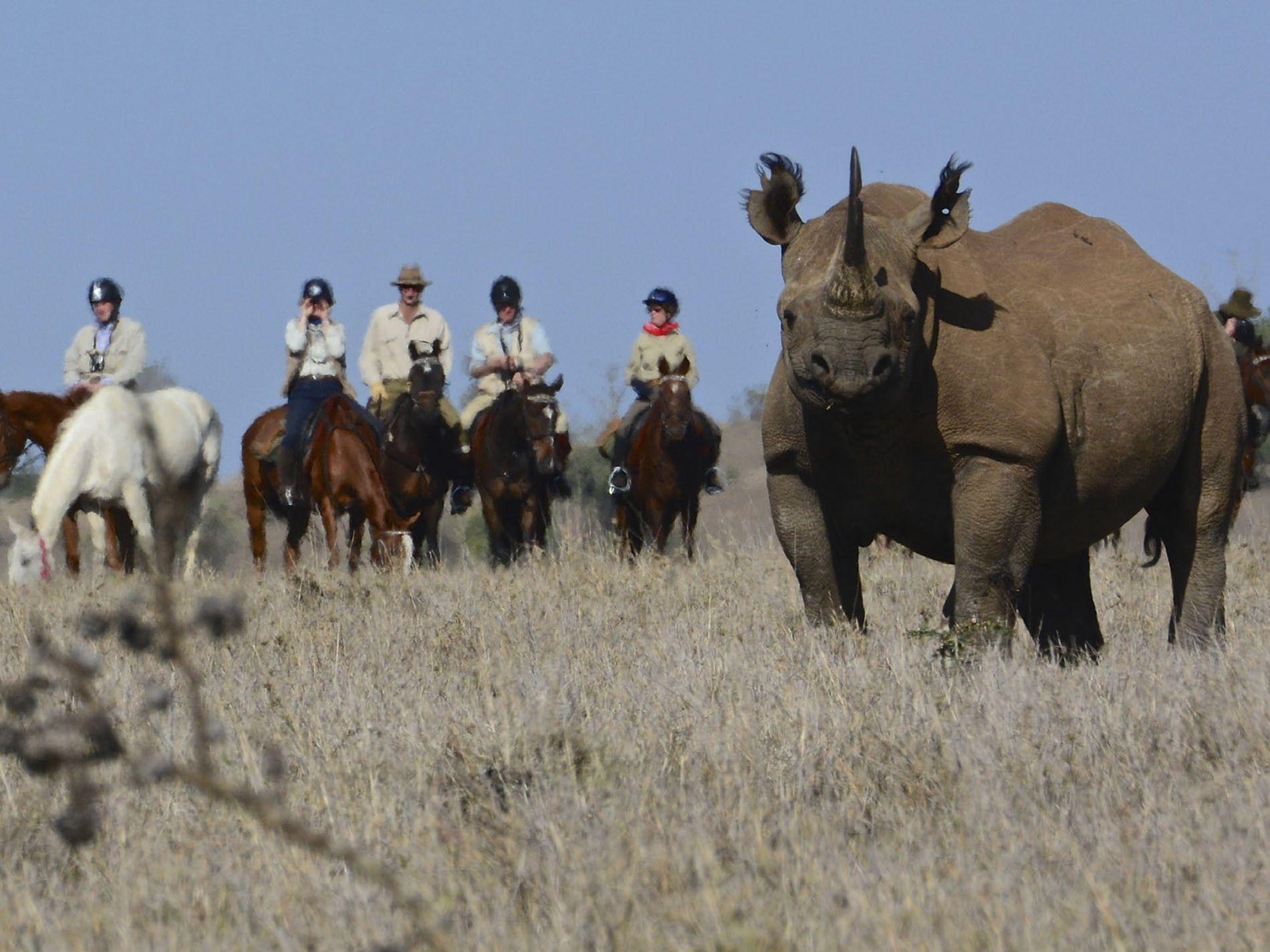 Riding Safari Association