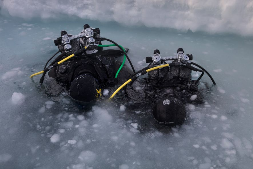 Scientists test the water before diving in Daneborg, Greenland. Once submerged, they'll collect organisms living at ...