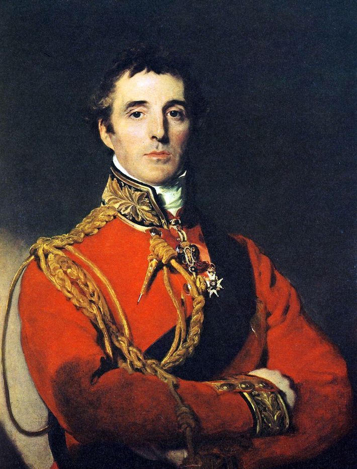 Napoleon's rival, the Duke of Wellington, was superb at defensive strategy on the battlefield. This portrait ...