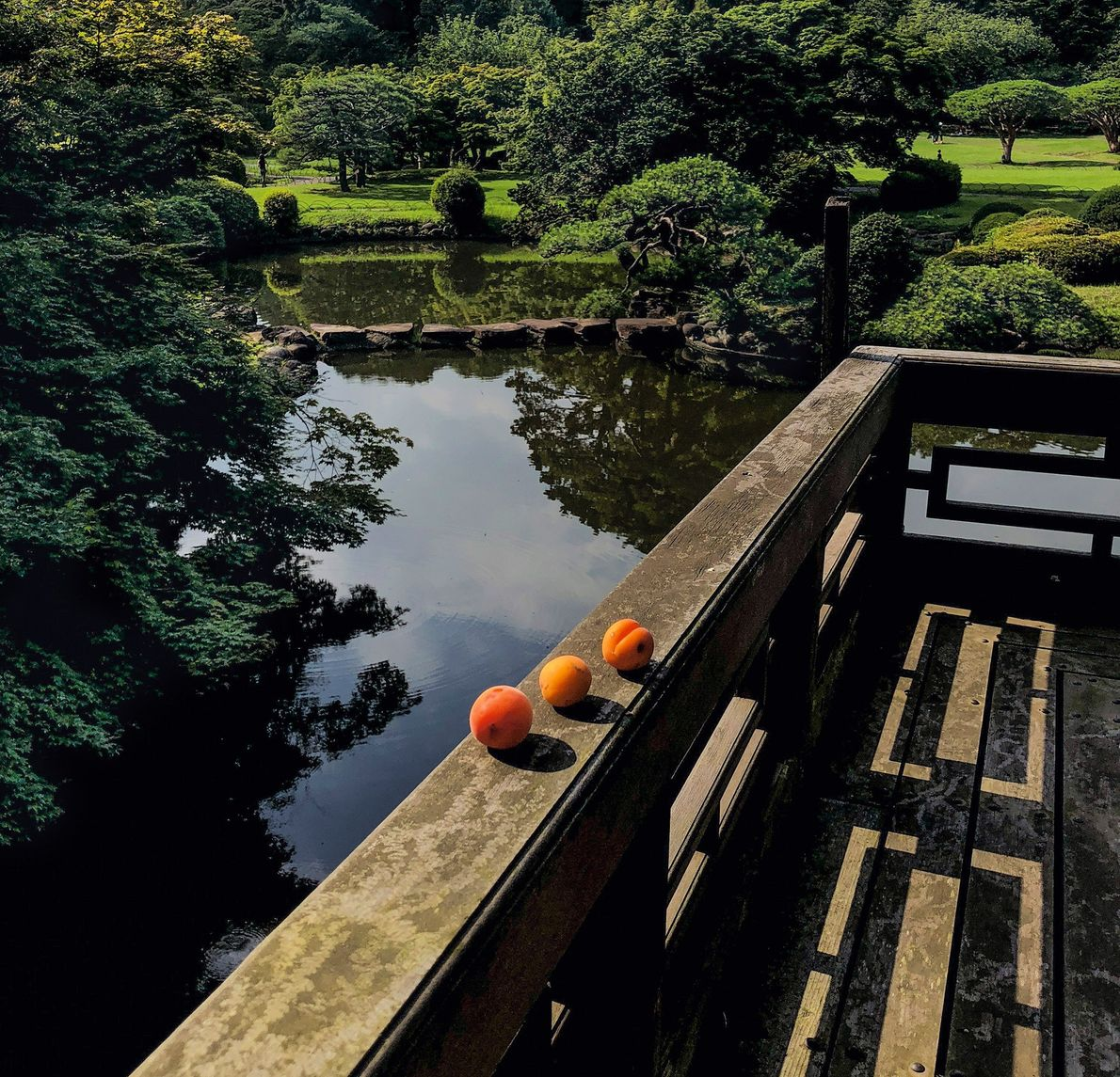 An offering of June apricots rests on the railing of a pavilion in Tokyo's Shinjuku Gyoen …