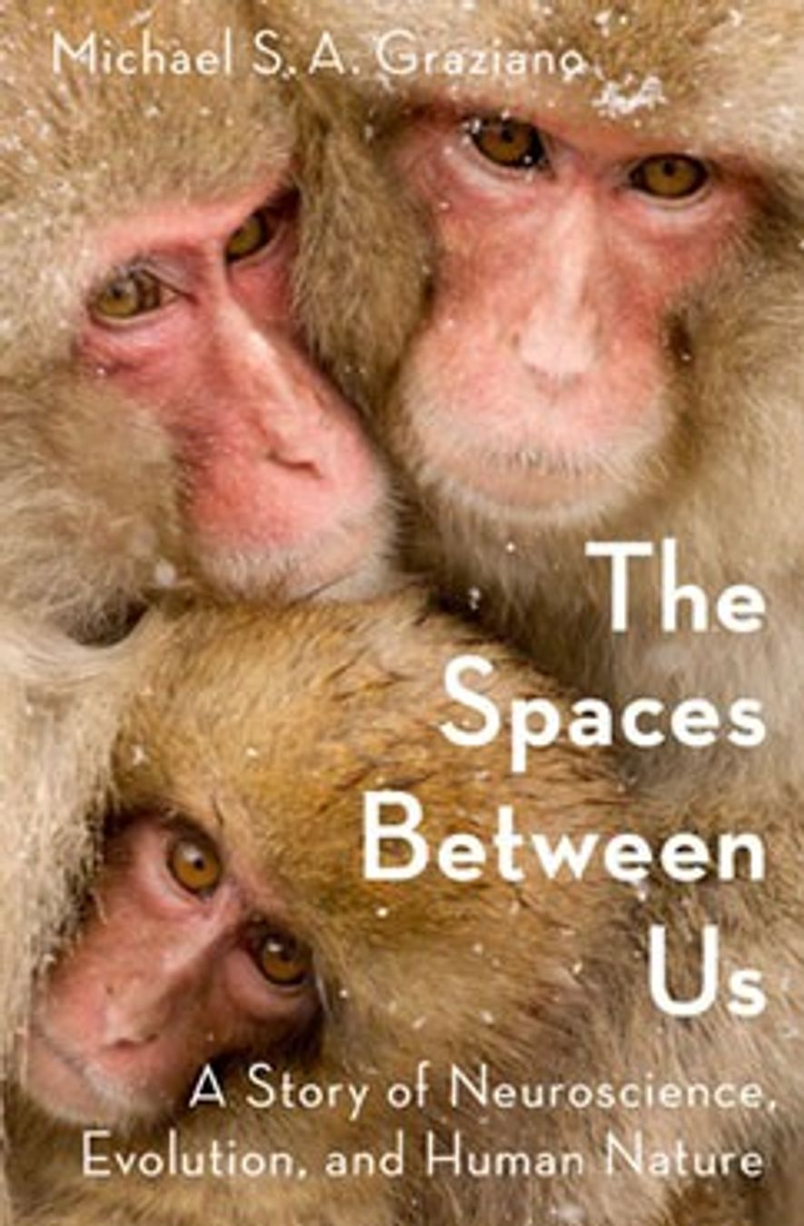 You Need Your Personal Space—Here's the Science Why