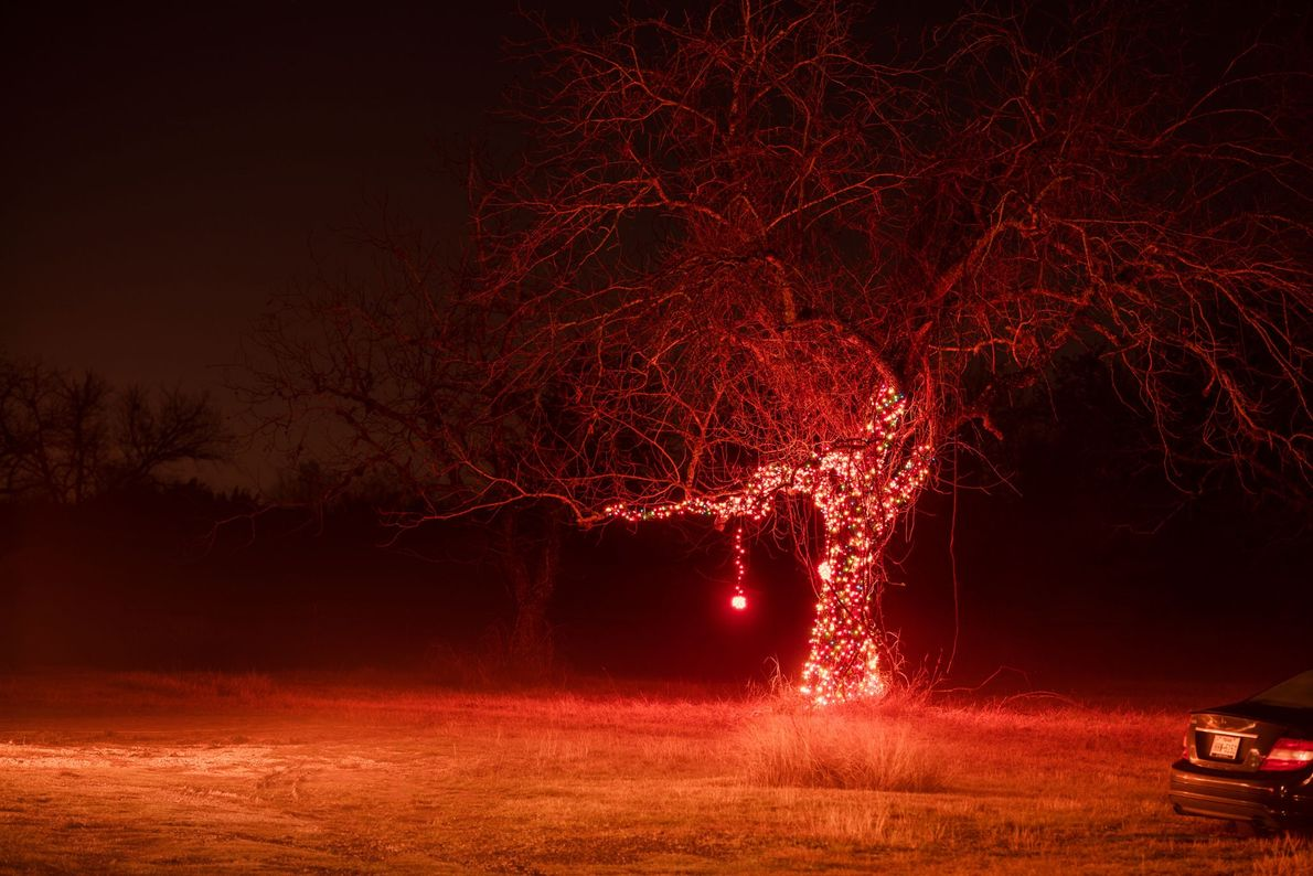 A singular lit tree sits along rural high Route 290 outside of Hye, Texas during Christmas, ...