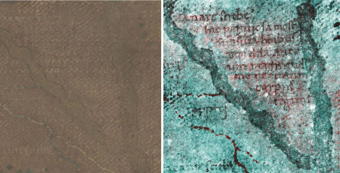 Invisible with regular light (left), a legend describing the panotii, a type of large-eared, part-human monster ...
