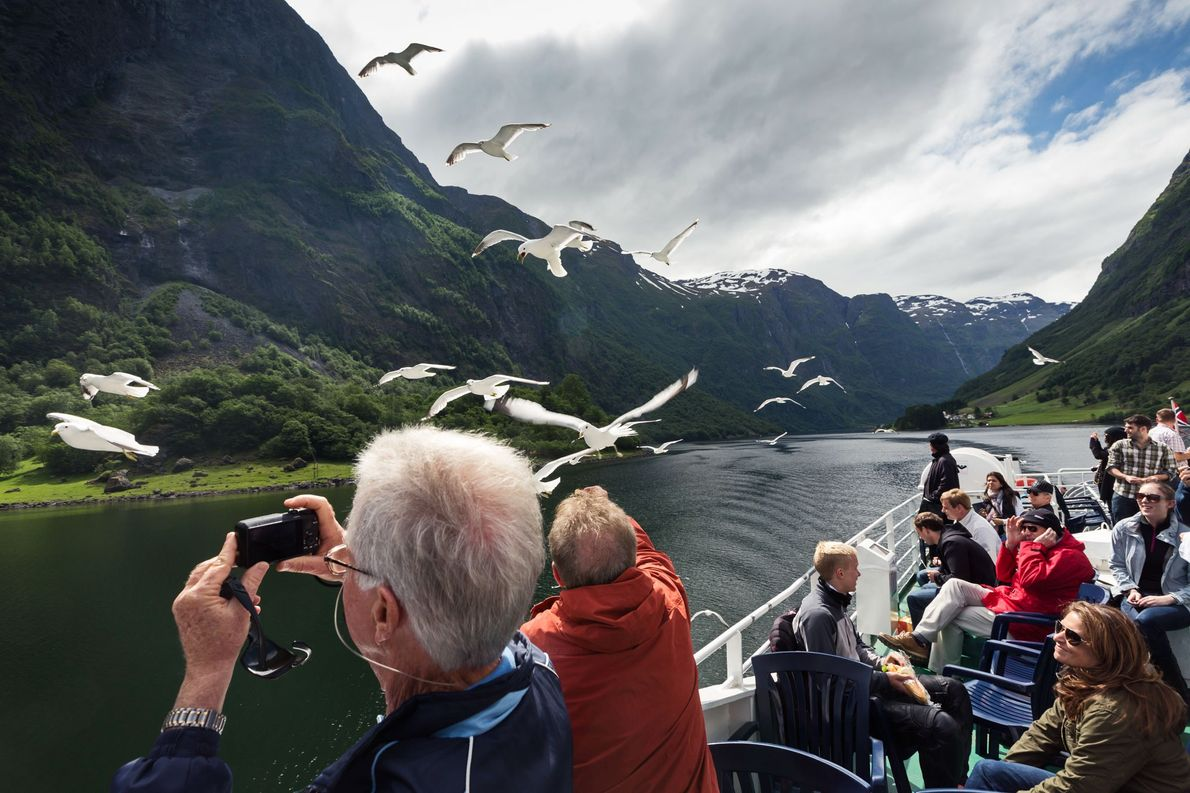 Tourists bird-watch among the fjords of Norway.