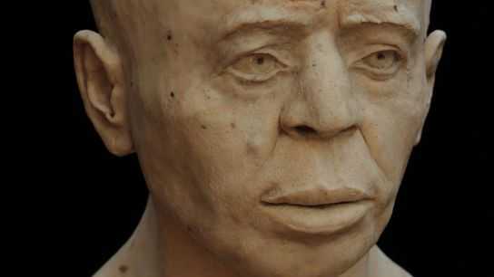 A facial reconstruction based on the human remains found inside the Jericho Skull.