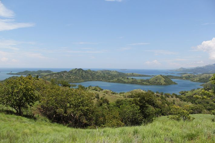 The island of Flores in Indonesia's East Nusa Tenggara province - along with the islands of ...