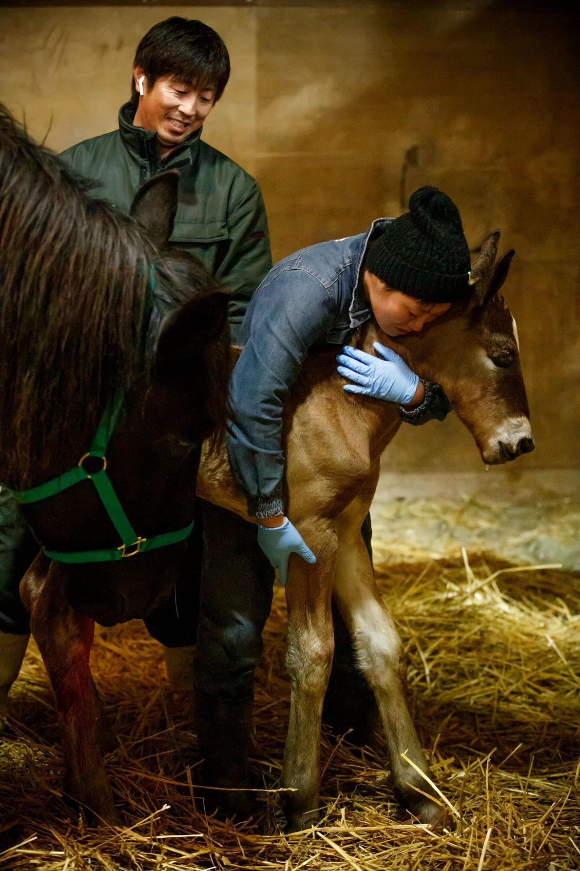 Your Shot photographer Michiyoshi Kokubo photographed people as they help a foal after just being born.