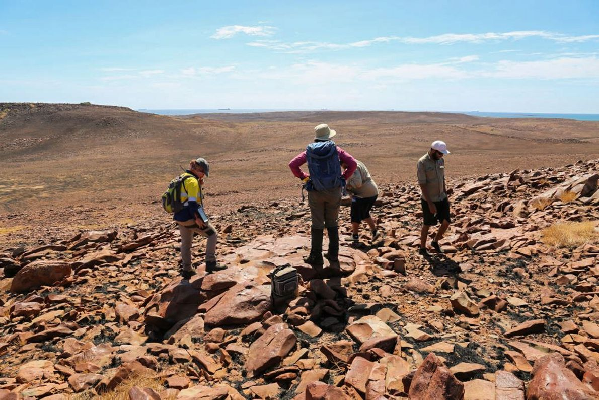 Archaeologists and Aboriginal rangers survey for rock art sites on Rosemary Island.