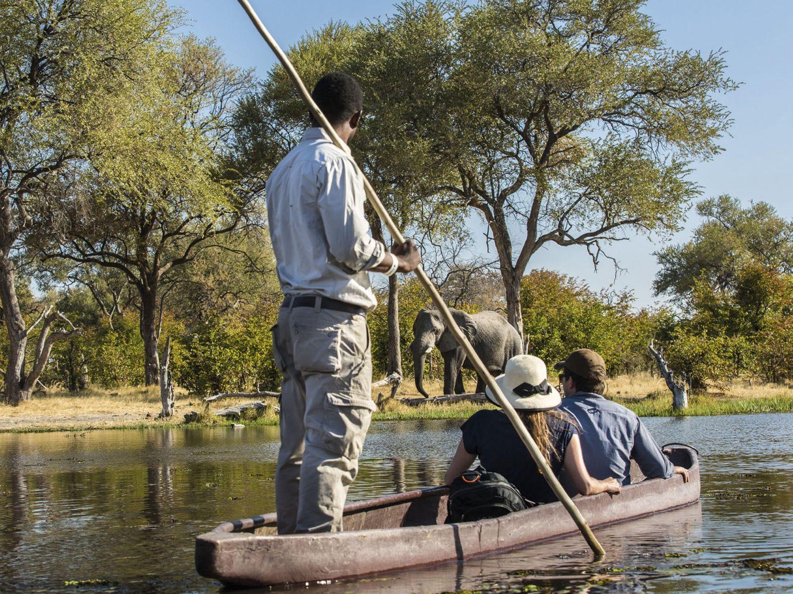 Partner Content: Machaba Safaris
